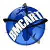 B.M.C.A.R.T. INTERNATIONAL RECRUITMENT AND PLACEMENT SERVICES INC