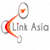 LINK ASIA MANPOWER SOLUTIONS CORP