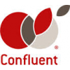 Confluent It Systems Limited